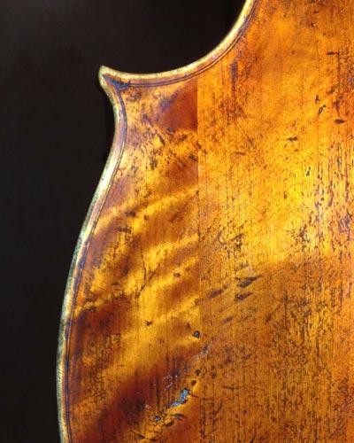 Back of violin